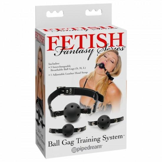 Ball Gag Training System